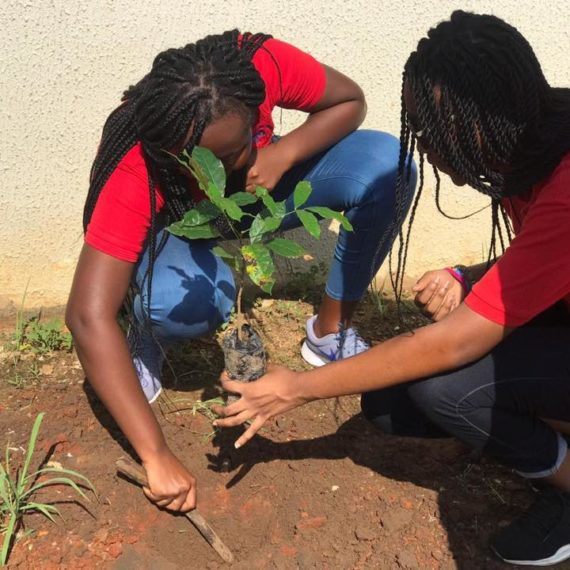 Tree Planting Exercise with with Real Change Network Africa of University of Ghana